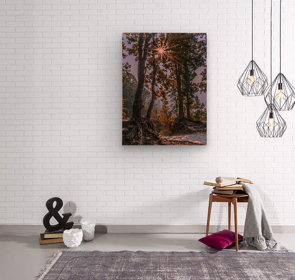 DSC_0328  Wood print