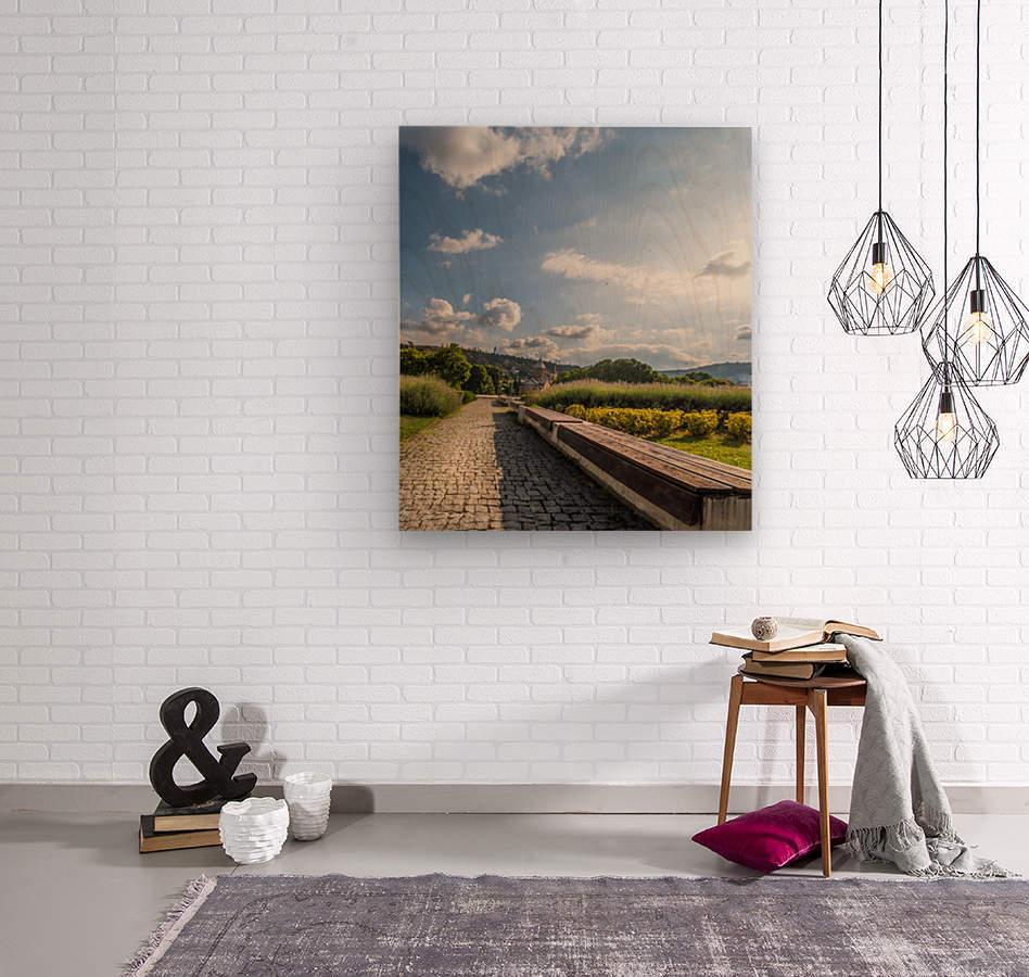 AZY_5231  Wood print