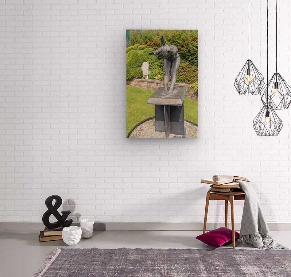 IMGP4902  Wood print