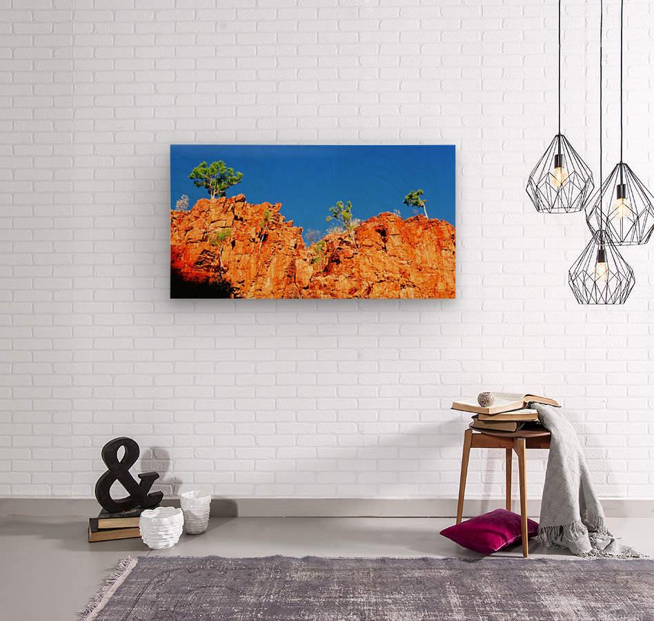 Skyline - Ormiston Gorge  Wood print