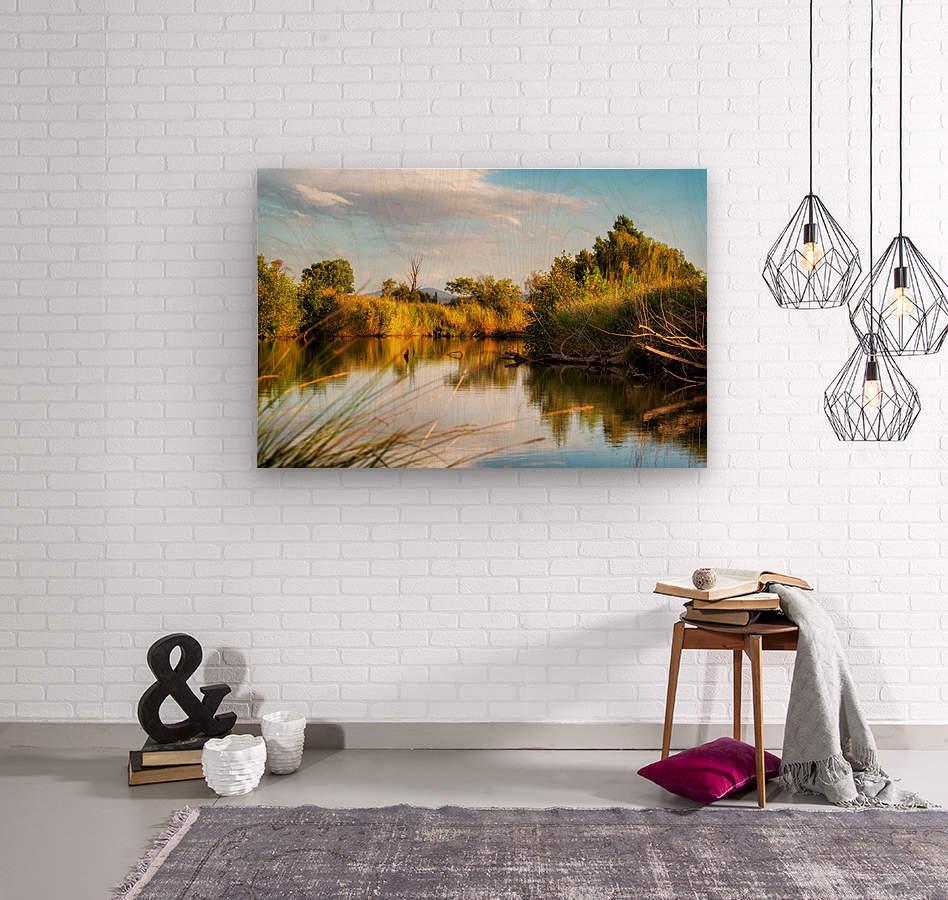 Serene River  Wood print