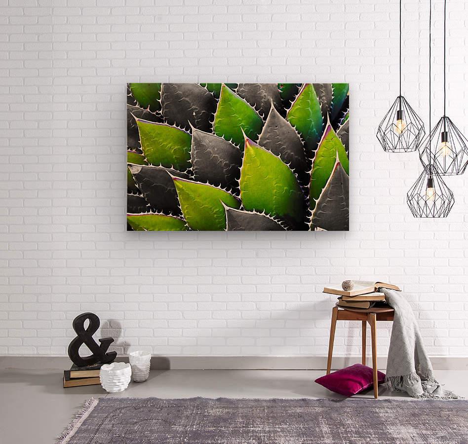 Thorny  Wood print
