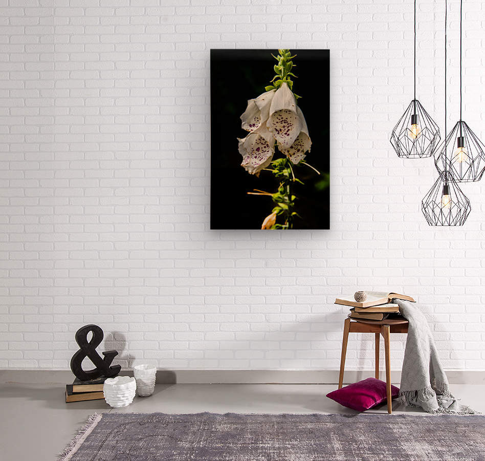 Foxgloves Flowers  Wood print