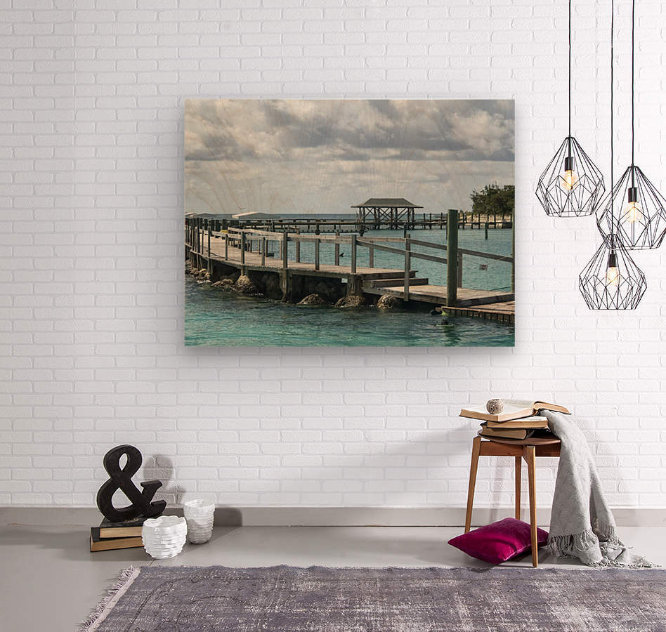 Dolphin Cove  Wood print