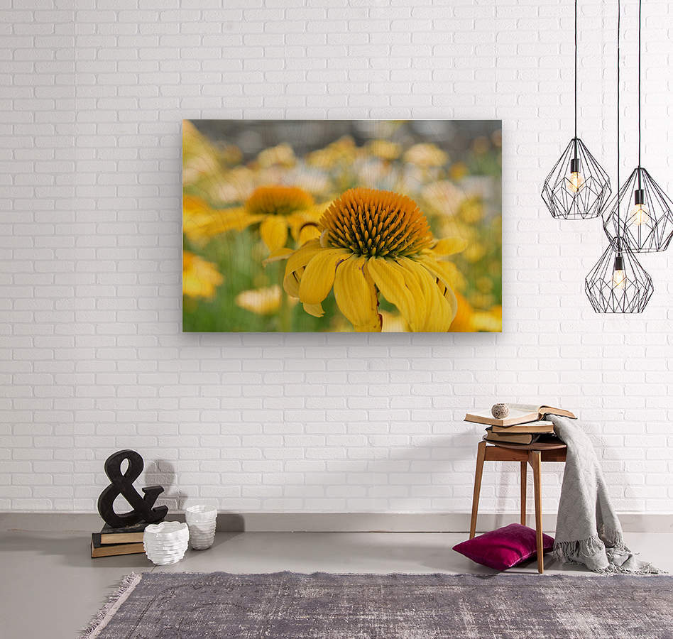 Yellow Flowers Photography  Wood print