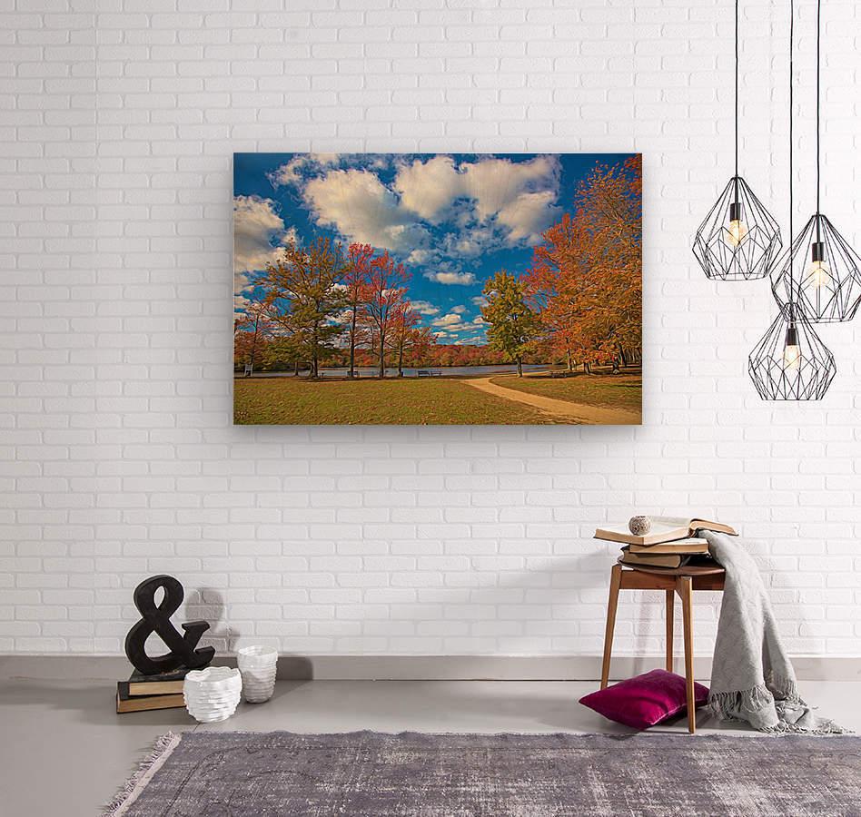 CK5L0849 studio  Wood print