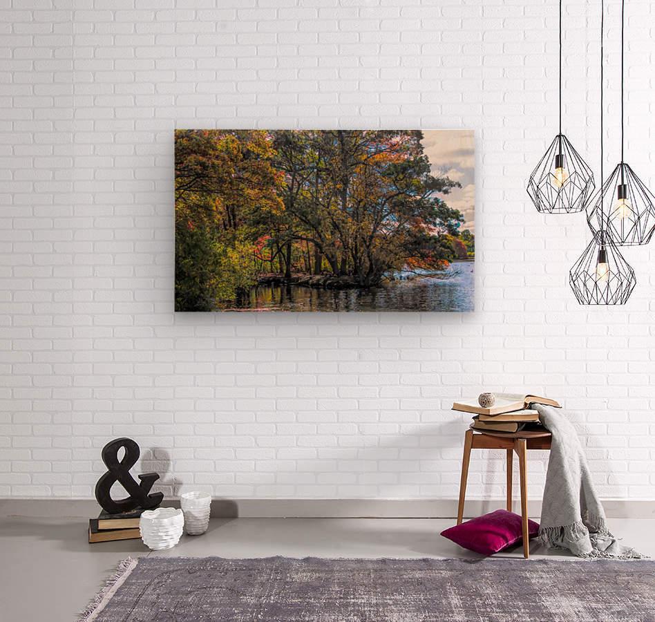 CK5L0858 studio  Wood print