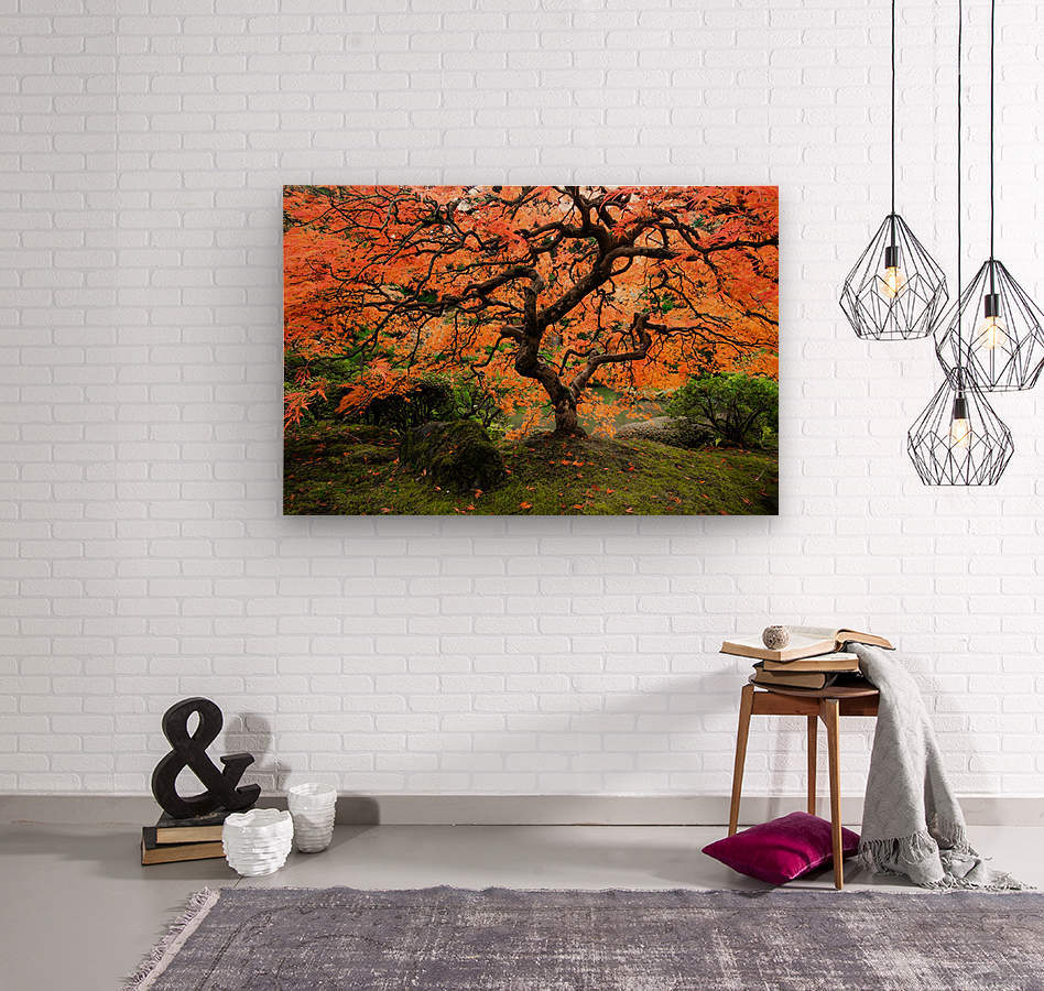 autumn bliss  Wood print