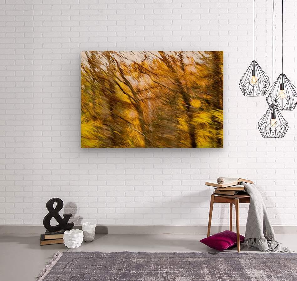Foliage Blur  Wood print
