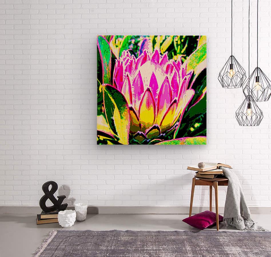 pink protea  Wood print