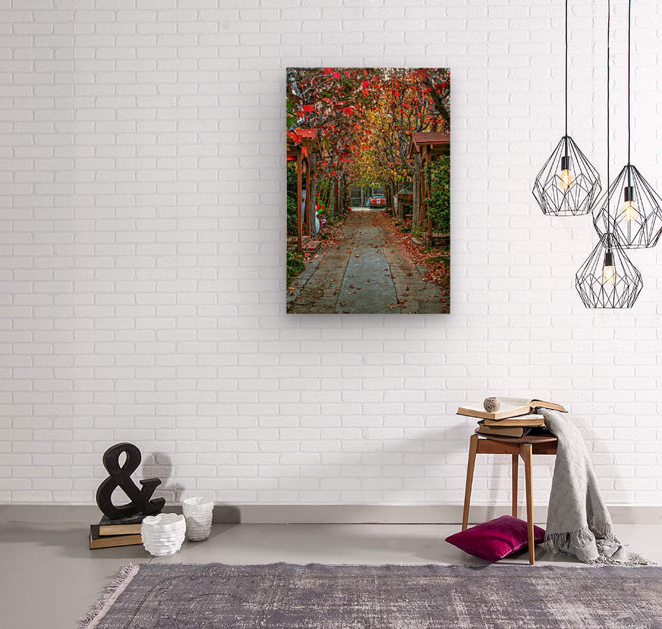 Fall in the city  Wood print