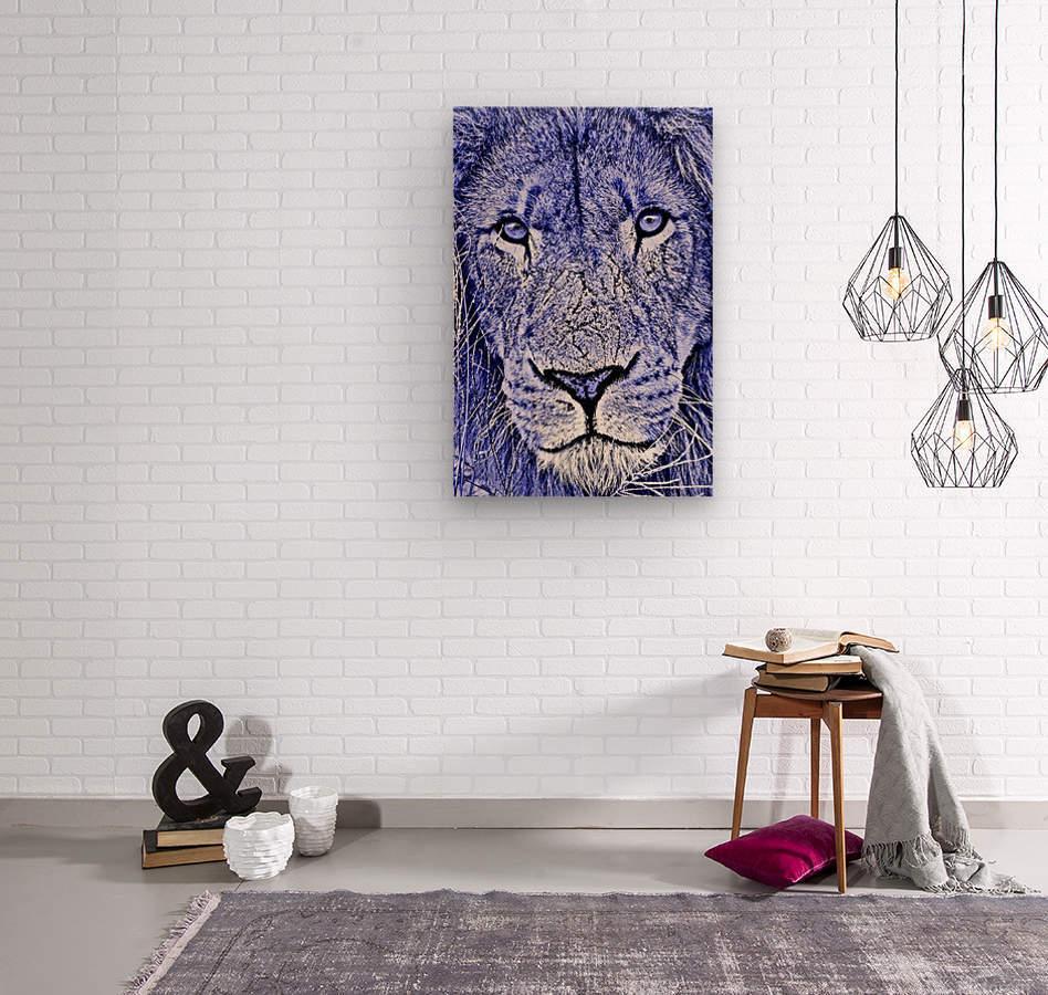 Male Lion Face thula art 5  Wood print