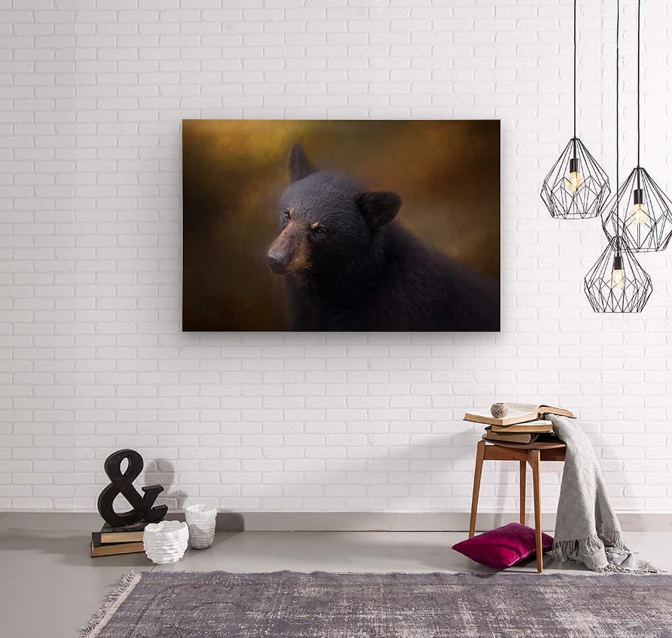 Black Bear Portrait  Wood print