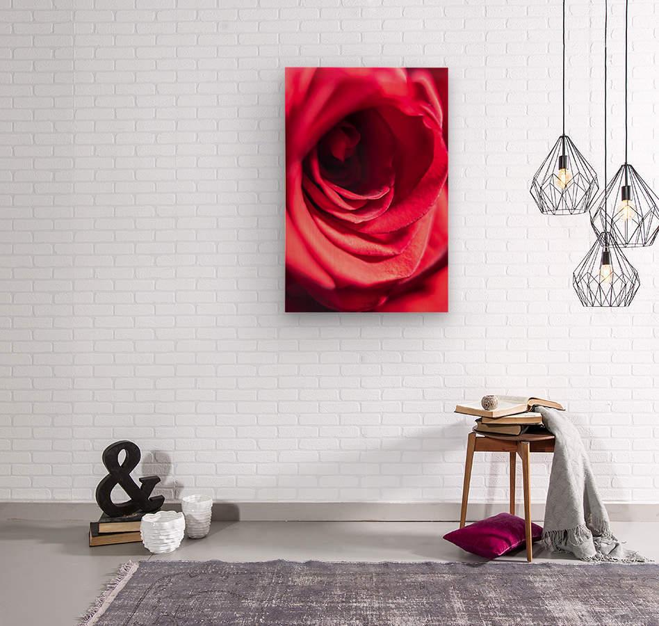 Red 2  Wood print