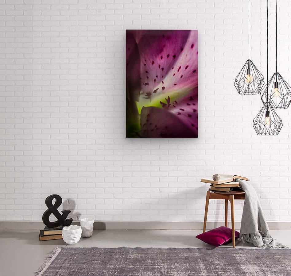 Pinky 2  Wood print