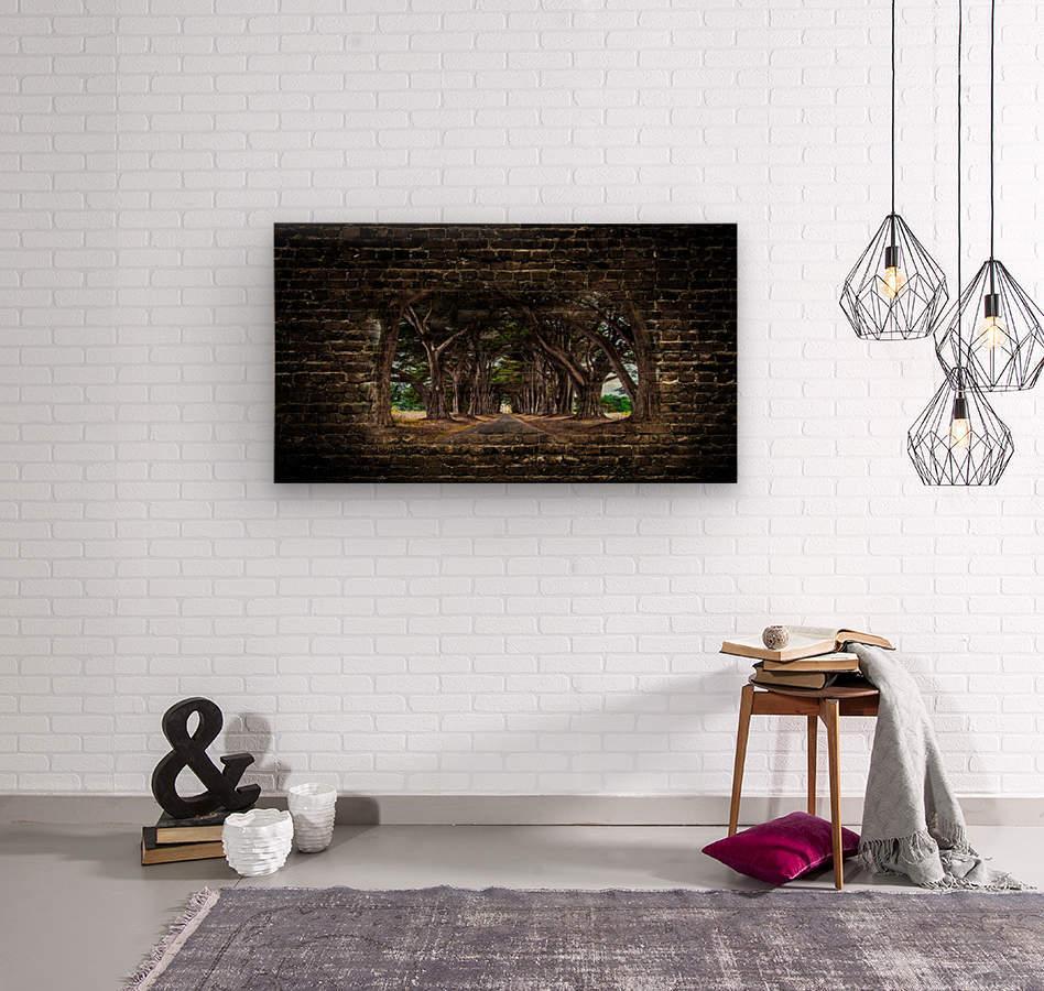 Intertwined  Wood print