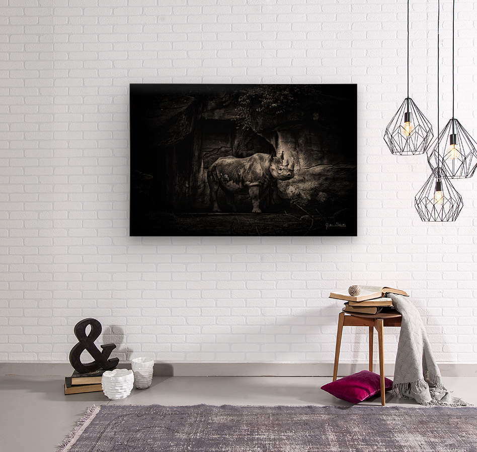 Rhino in Black & White  Wood print