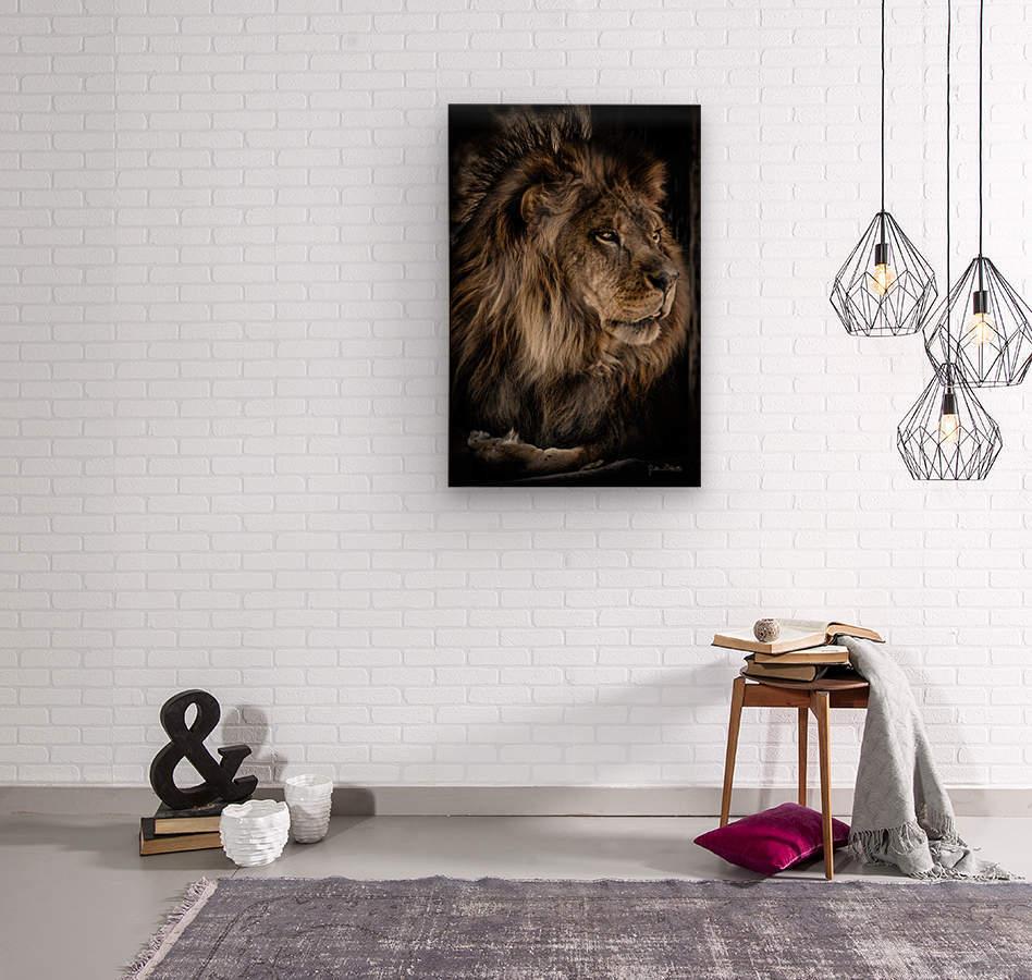 A Lions Profile  Wood print