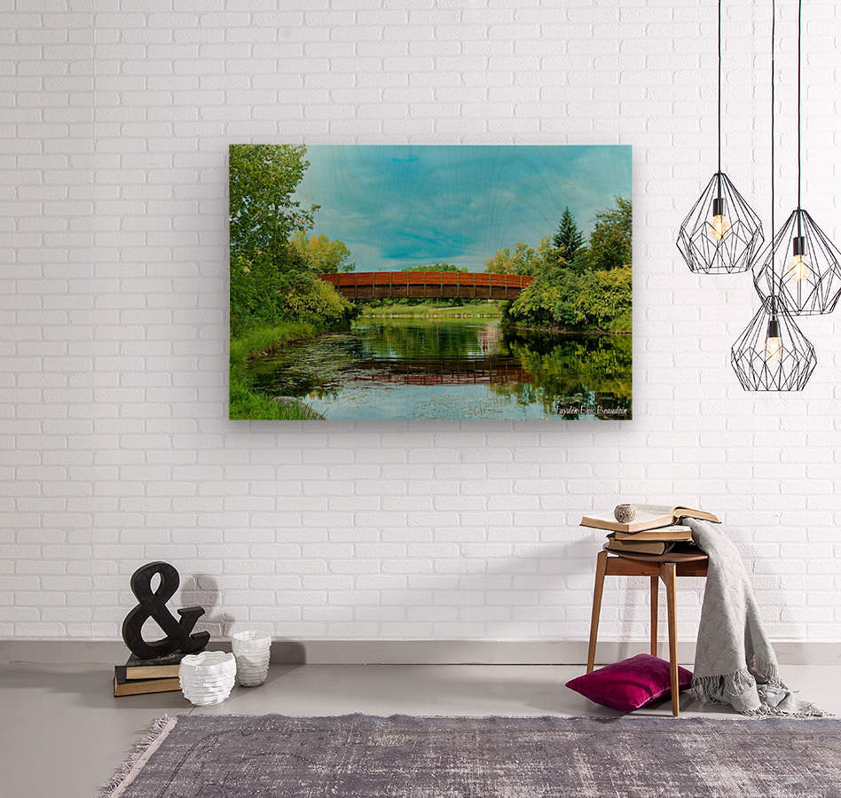 The Lonley Bridge  Wood print