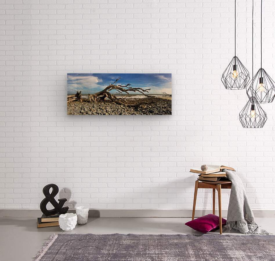 Driftwood Beach Panorama 101  Wood print