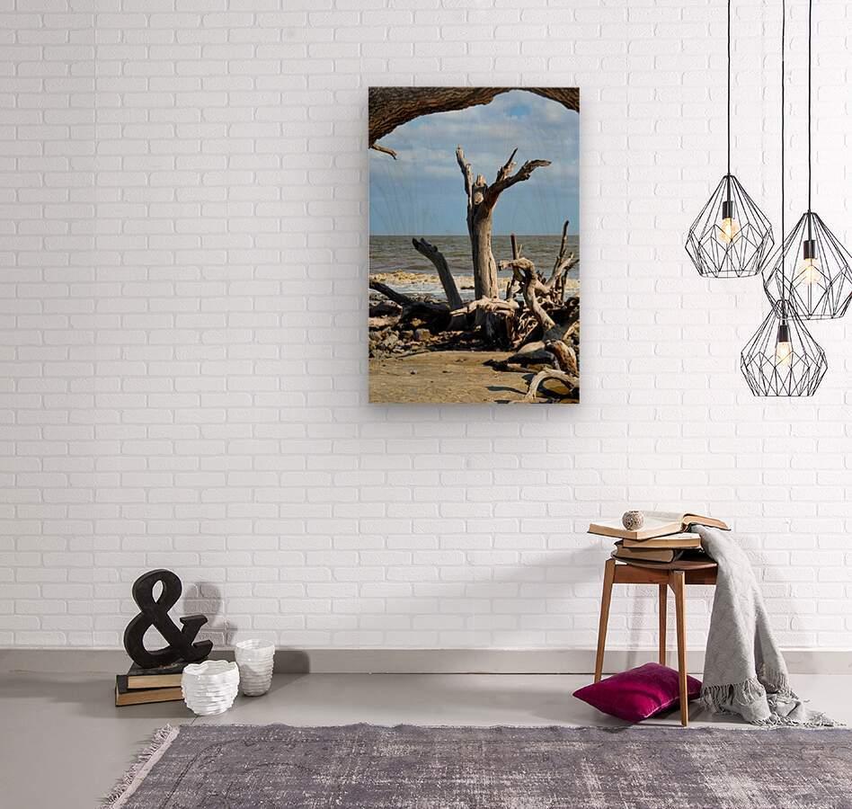 Driftwood Beach Uplifting  Wood print