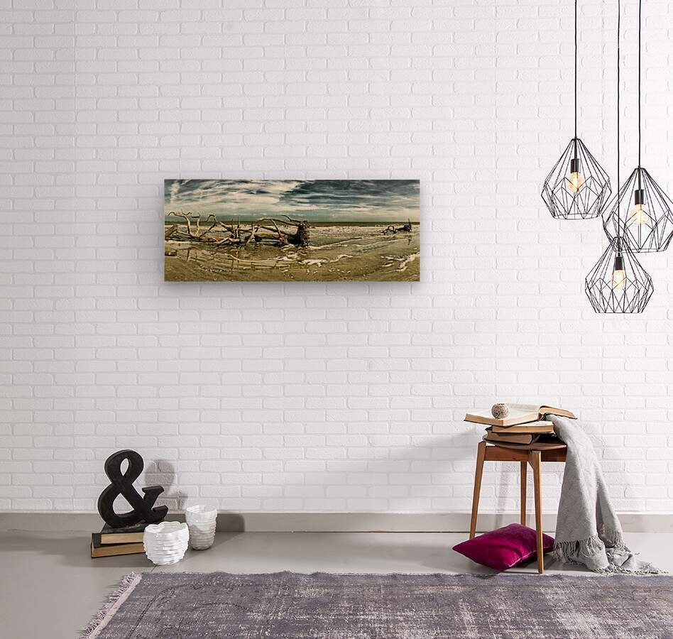 Driftwood Beach Panorama 103 Blackgold  Wood print