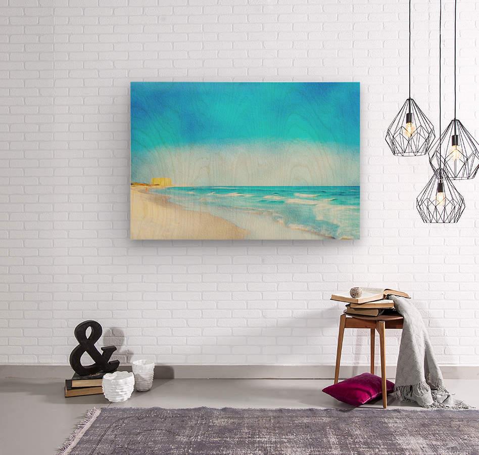 30A Coastline  Wood print