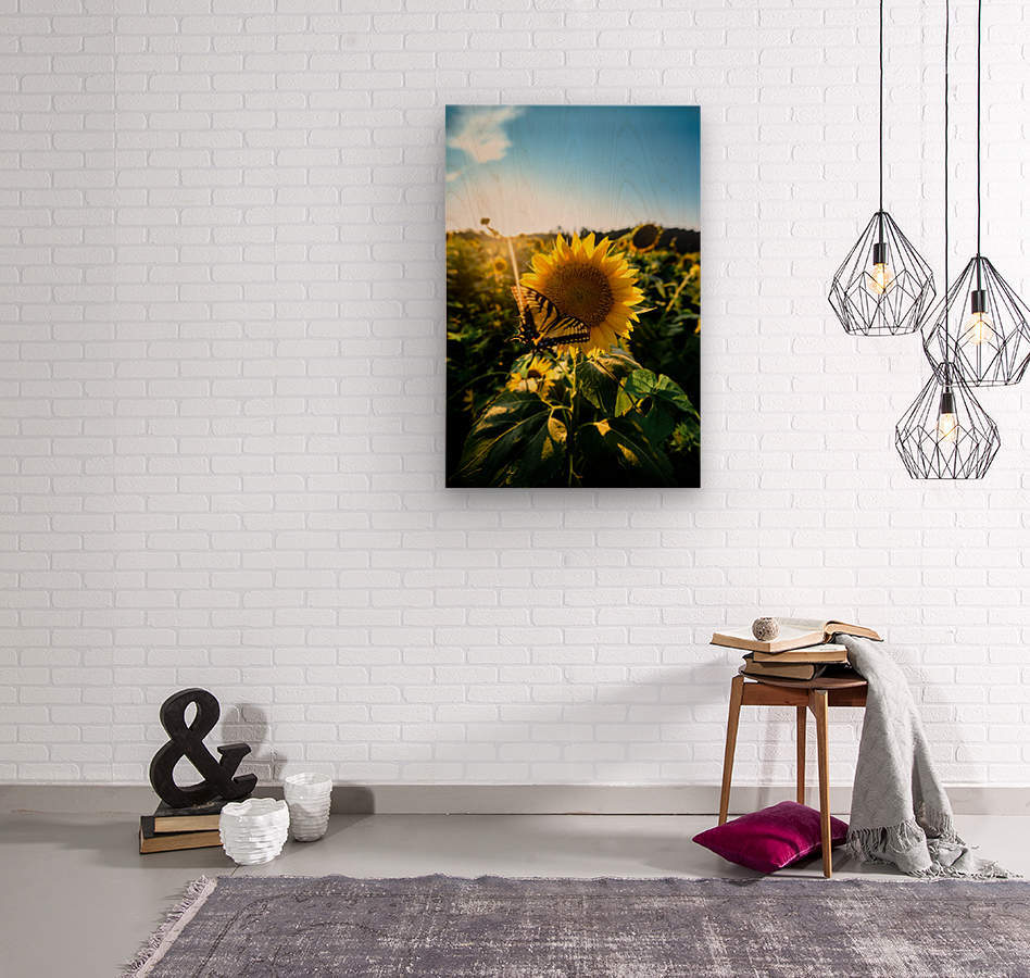 Sunflower Love  Wood print