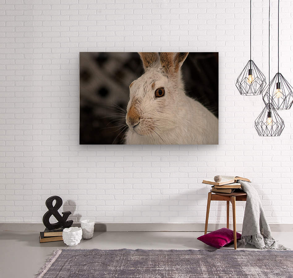 Mr Rabbit  Wood print
