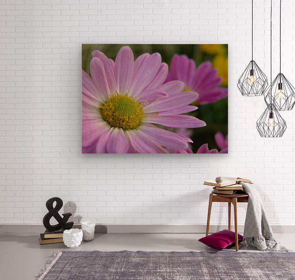 Floral Photograph   Wood print
