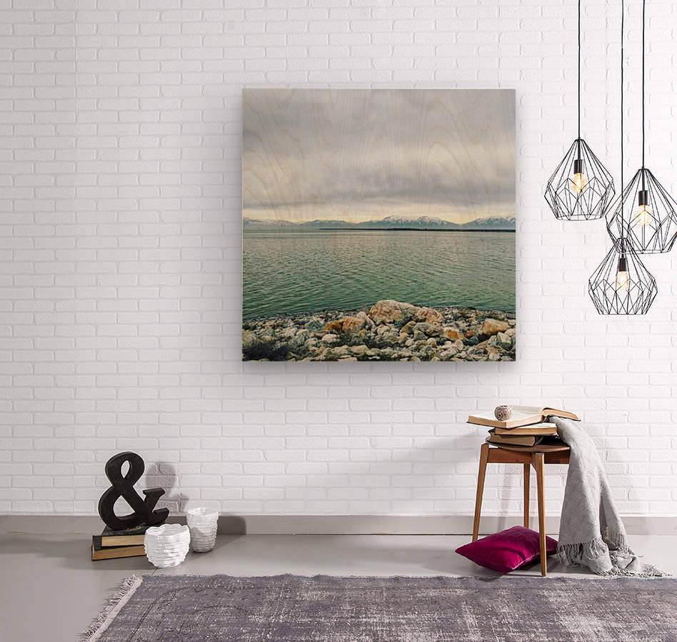 Great Salt Lake Shoreline  Wood print