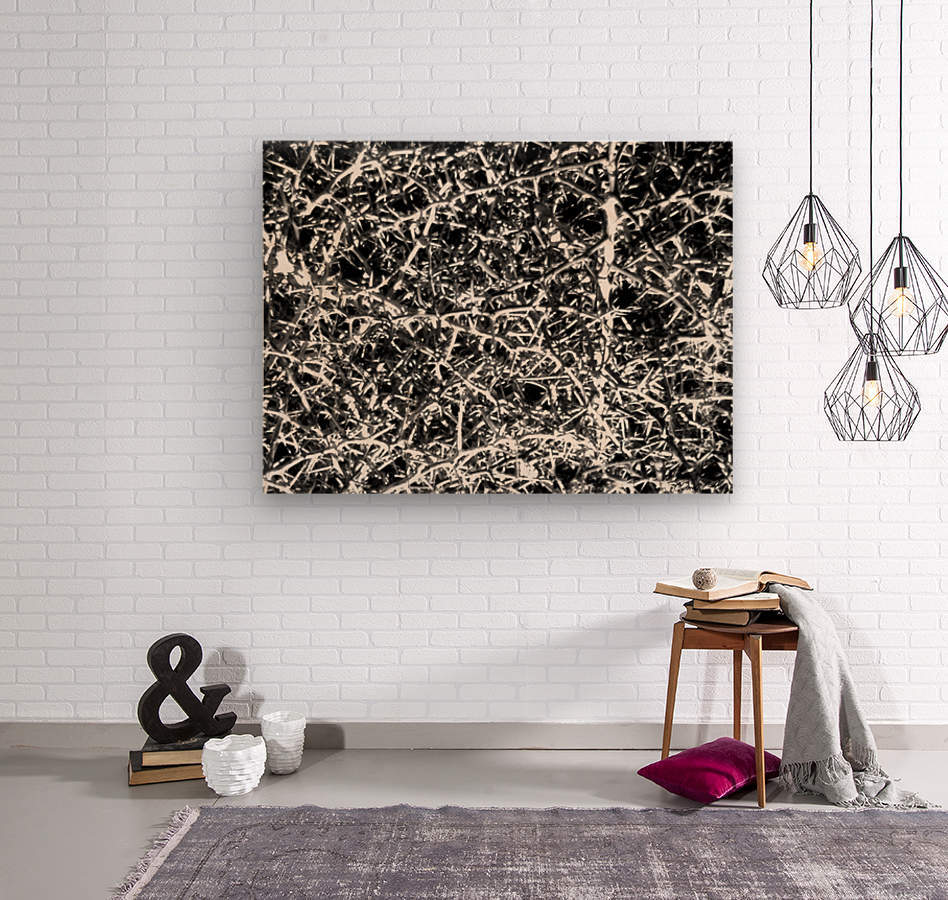 Black & White Nature  Wood print