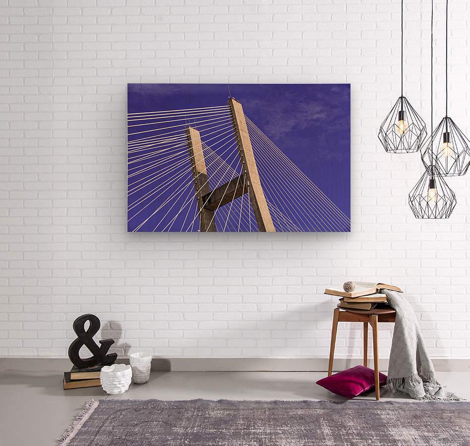 Talmadge Memorial Bridge   Savannah 04212  Wood print