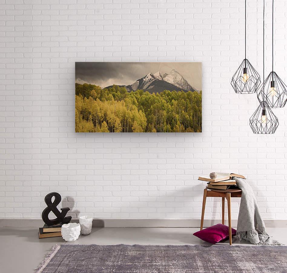 Kebler Pass   Wood print