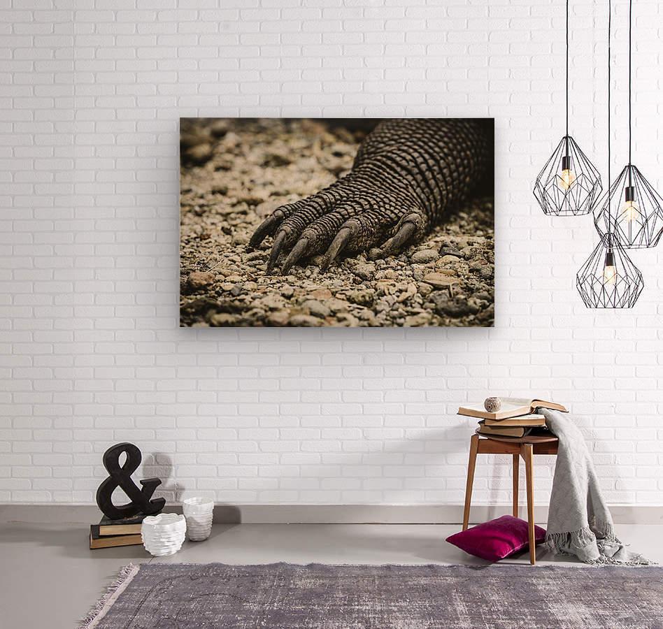 Dragons Claw  Wood print