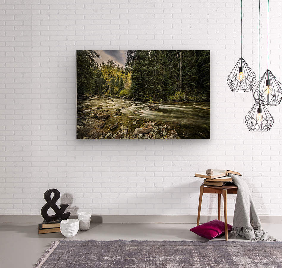 Rocky Mountain Forest  Wood print
