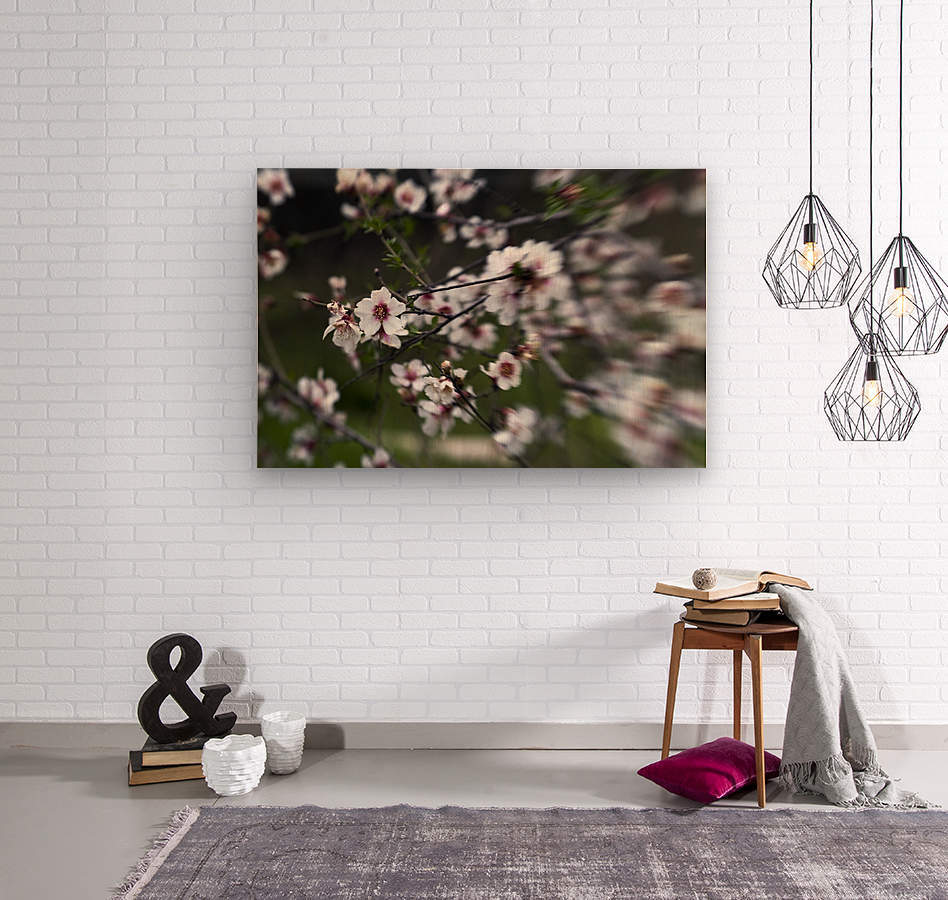 Flowering almonds 1  Wood print