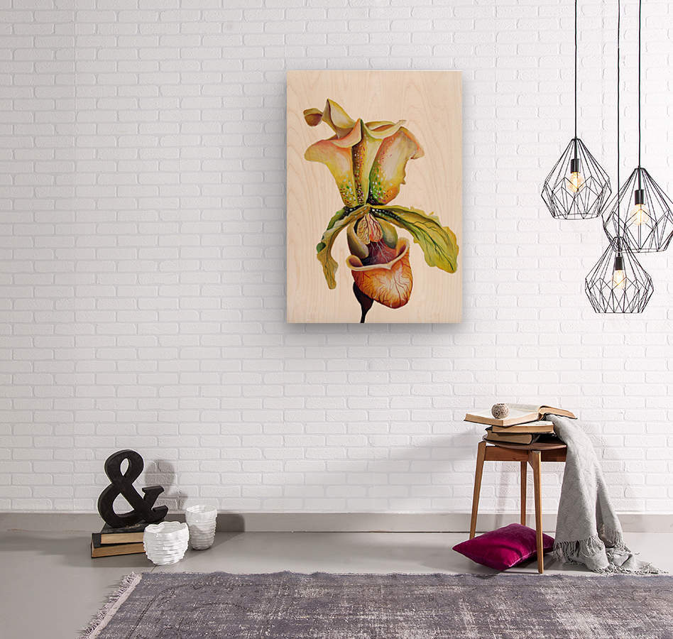 Blooming Paphiopedilum Orchids  Wood print