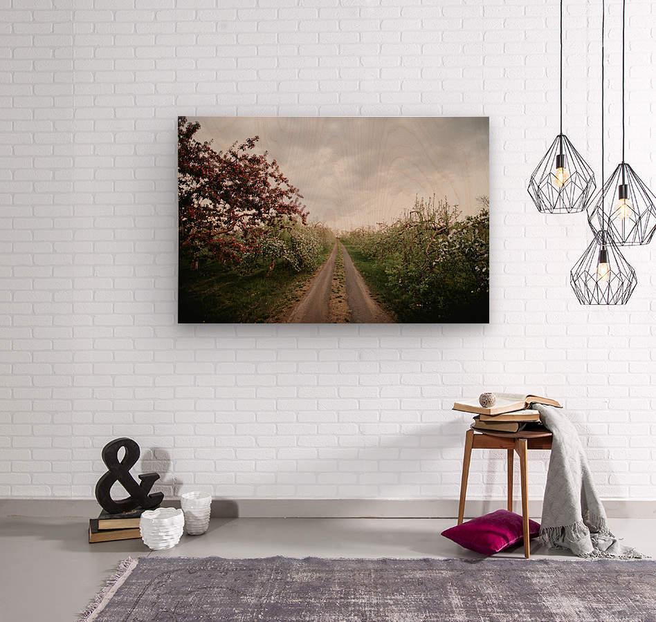 Chemin fleuri  Impression sur bois