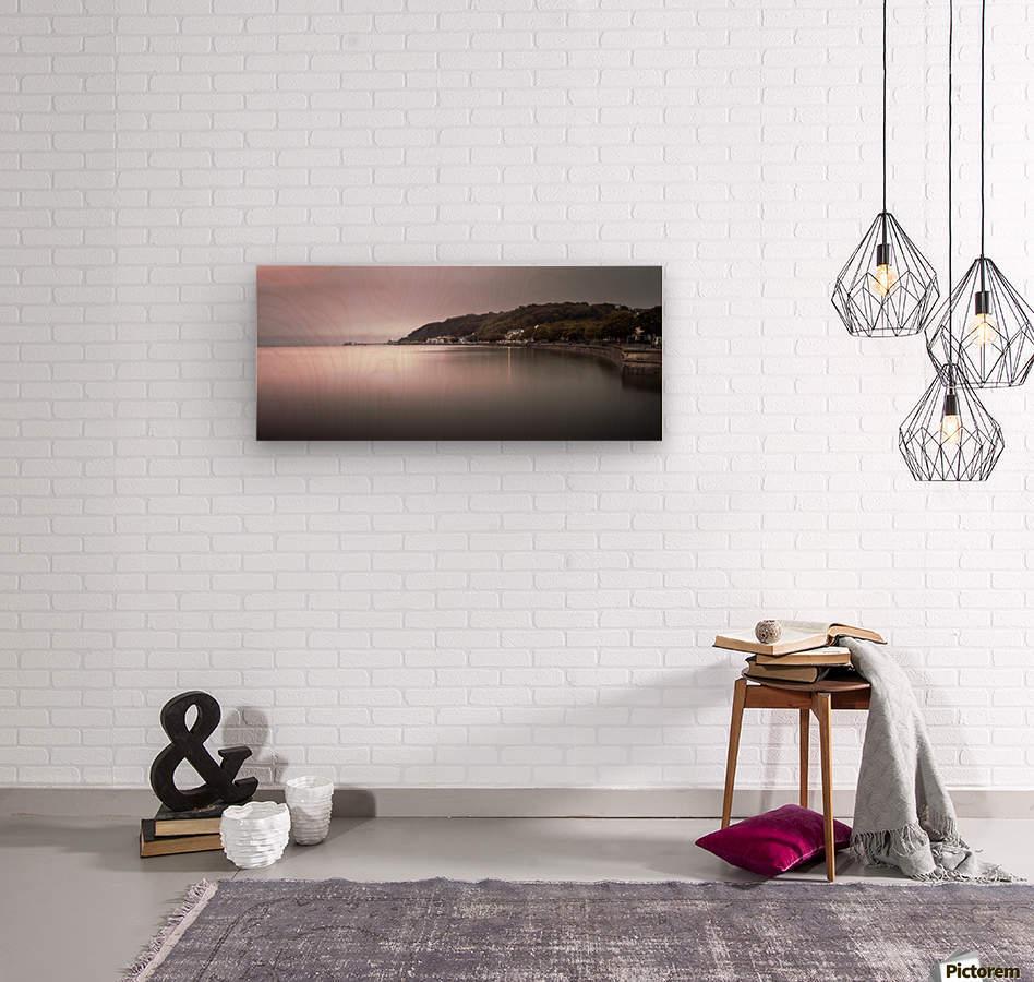 Mumbles coastline Swansea  Wood print