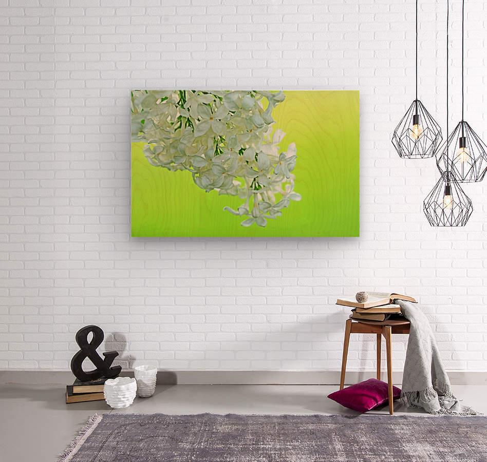 Cool White Lilac On Lemon Lime  Wood print