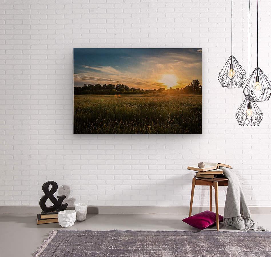 Creekside Sunset 1  Wood print