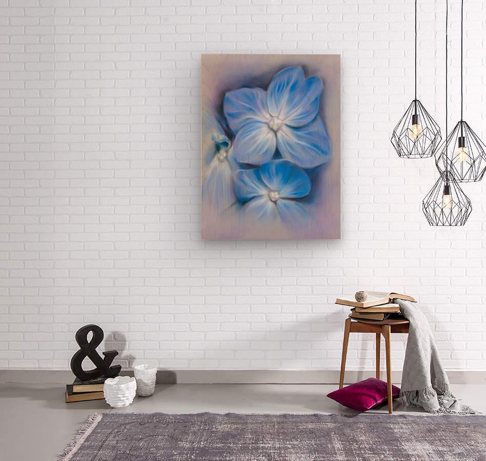 Blue Hydrangea Blossoms  Wood print