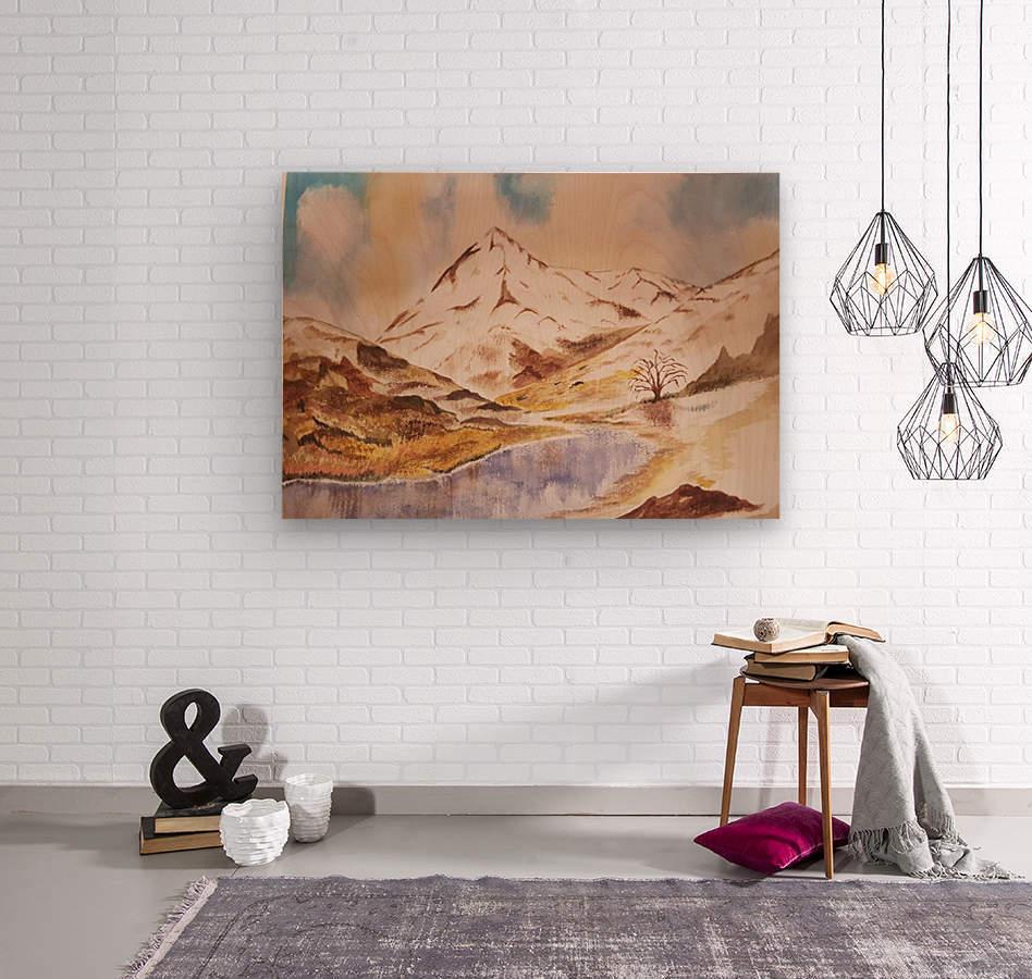 Ladakh Stream  Wood print