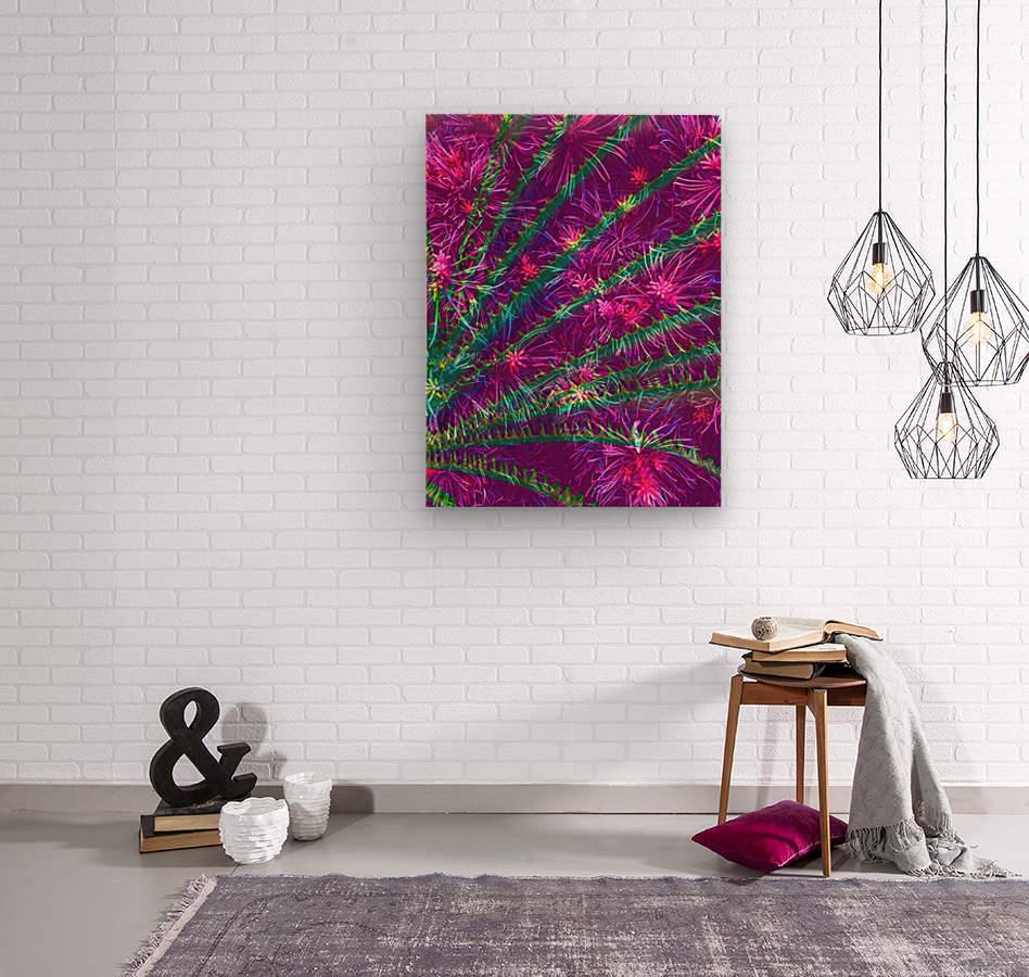 Elegant Fan  Wood print