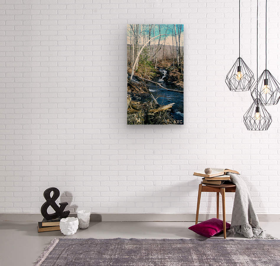Brook through the Forest  Wood print