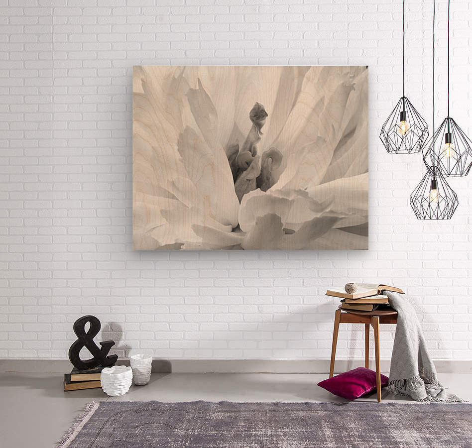 Peony III Black and White  Wood print