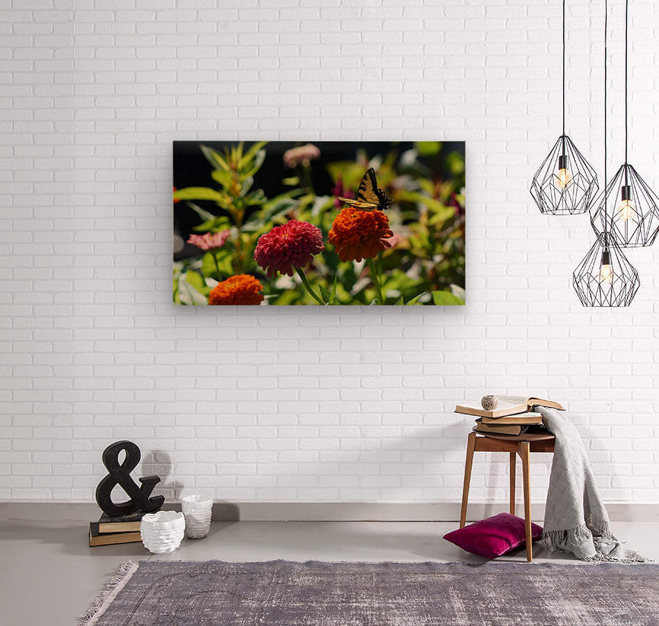 Gorgeous Flower Color  Wood print