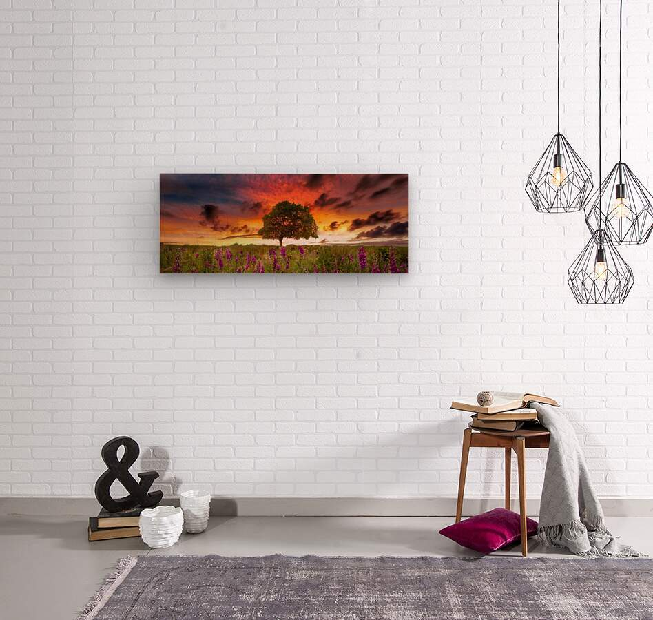 Foxgloves at sunset  Wood print