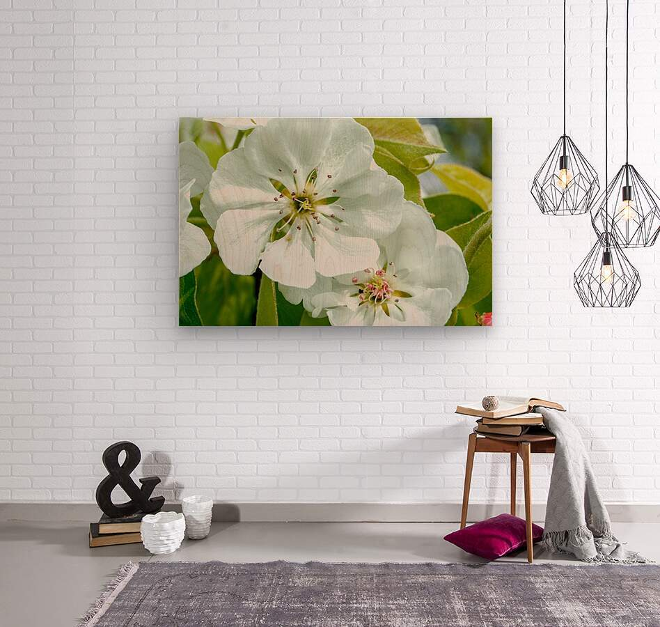 Pear Blossom - No. 1  Wood print